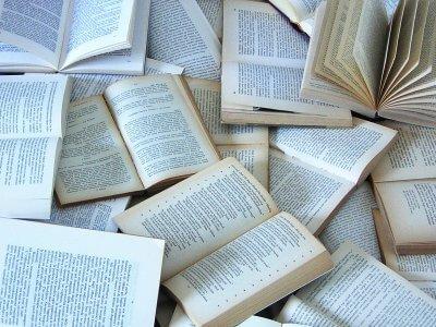 Tanto studio sui libri - Alessandro Ziccardi